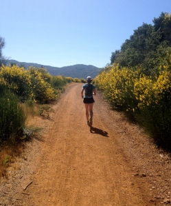 Happy trails! I'm celebrating National Running Day in Almaden Quicksilver County Park.